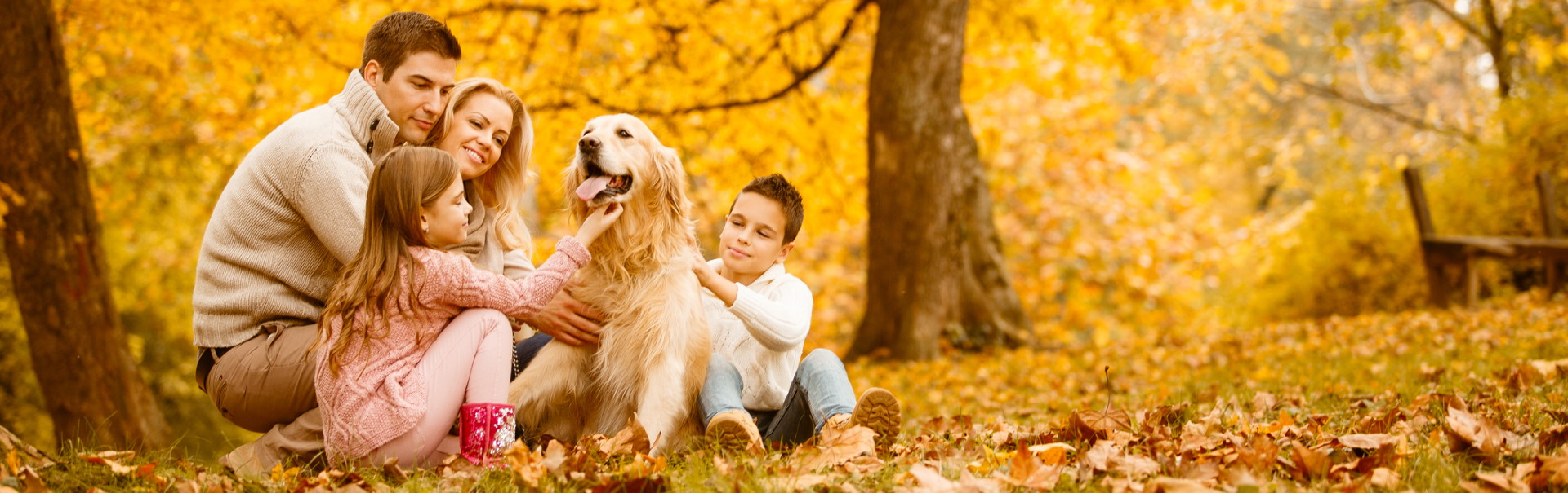 Family-and-dog-in-autumn-park-header.jpg